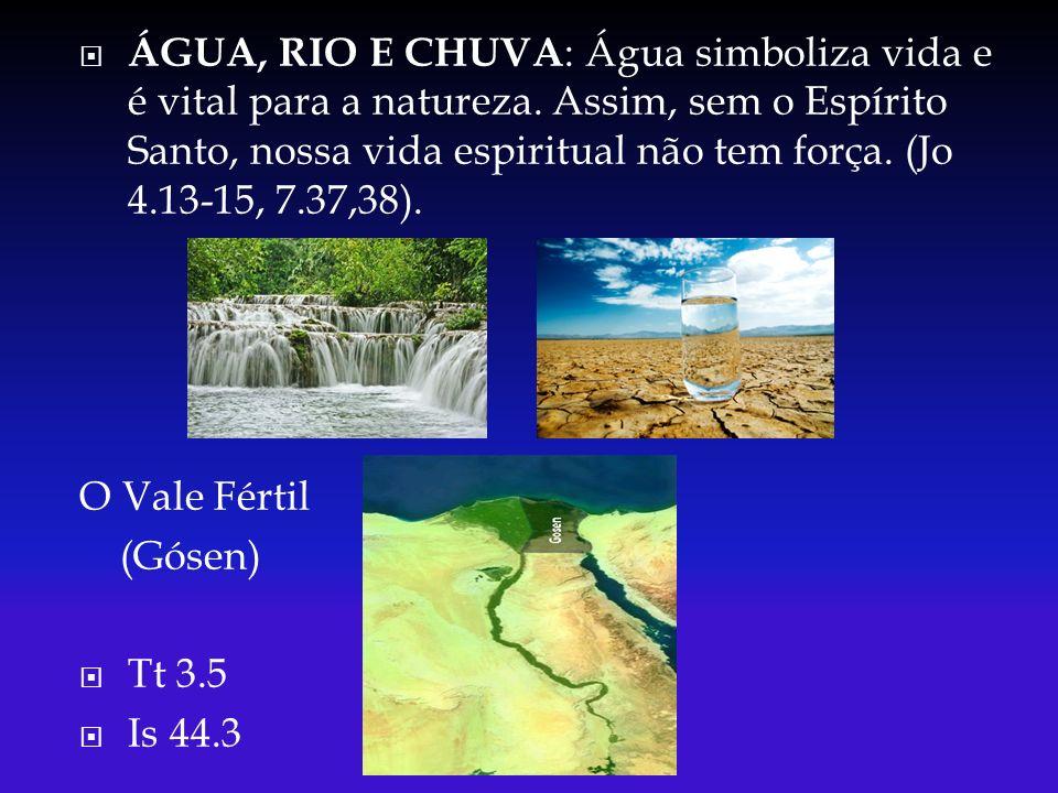 ÁGUA, RIO E CHUVA: Água simboliza vida e é vital para a natureza