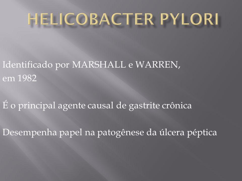 Helicobacter pylori Identificado por MARSHALL e WARREN, em 1982