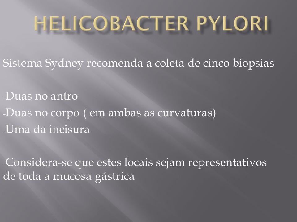 Helicobacter pylori Sistema Sydney recomenda a coleta de cinco biopsias. Duas no antro. Duas no corpo ( em ambas as curvaturas)