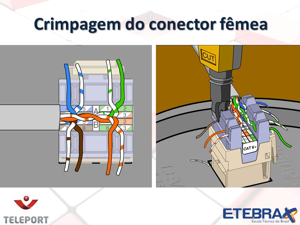 Crimpagem do conector fêmea