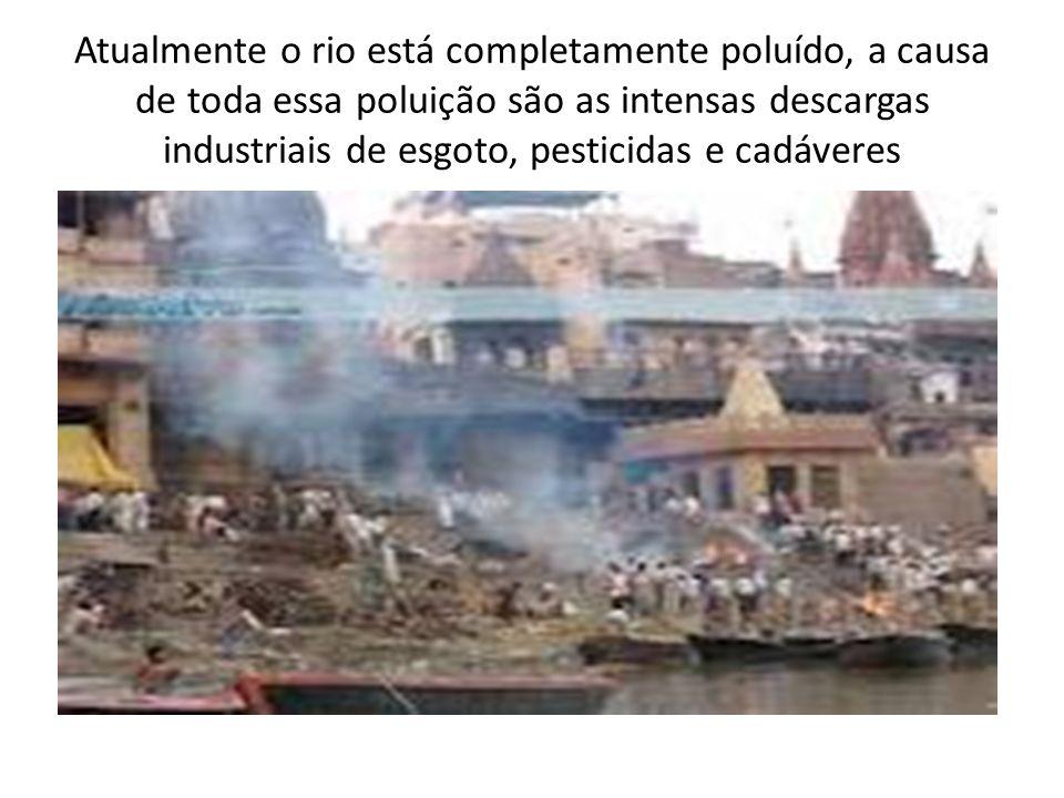 Atualmente o rio está completamente poluído, a causa de toda essa poluição são as intensas descargas industriais de esgoto, pesticidas e cadáveres
