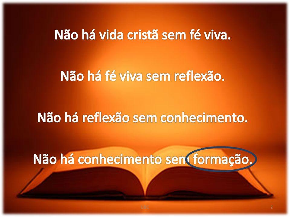 Não há vida cristã sem fé viva. Não há fé viva sem reflexão.