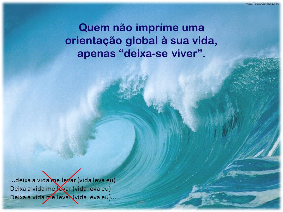Quem não imprime uma orientação global à sua vida, apenas deixa-se viver .