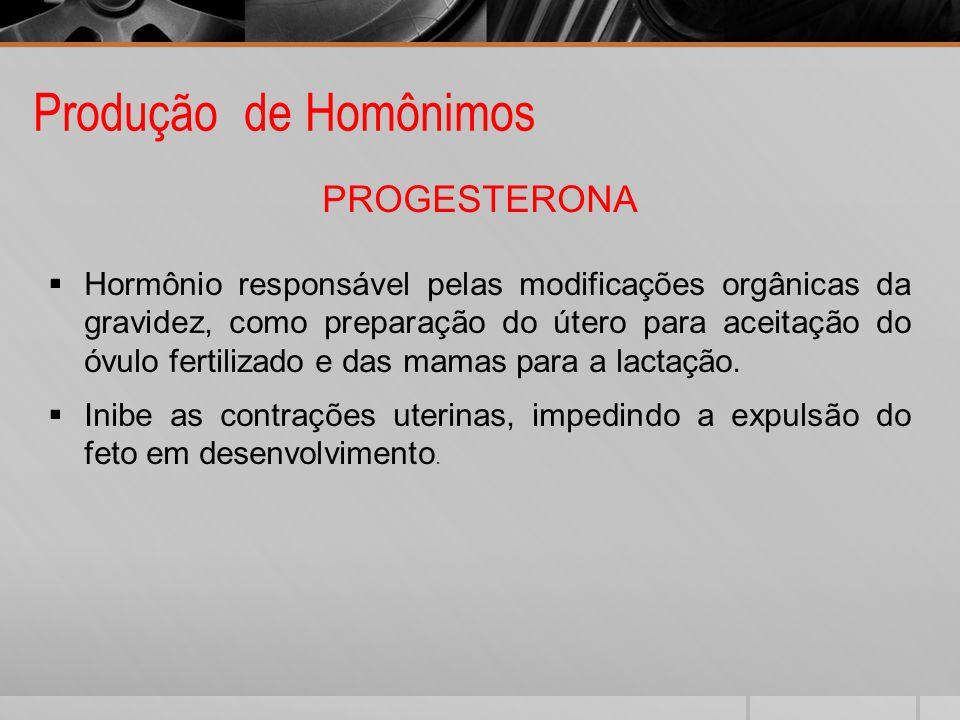 Produção de Homônimos PROGESTERONA