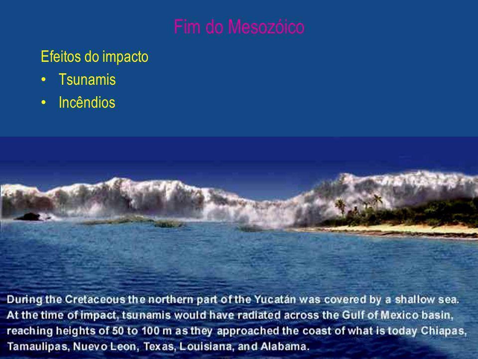 Fim do Mesozóico Efeitos do impacto Tsunamis Incêndios