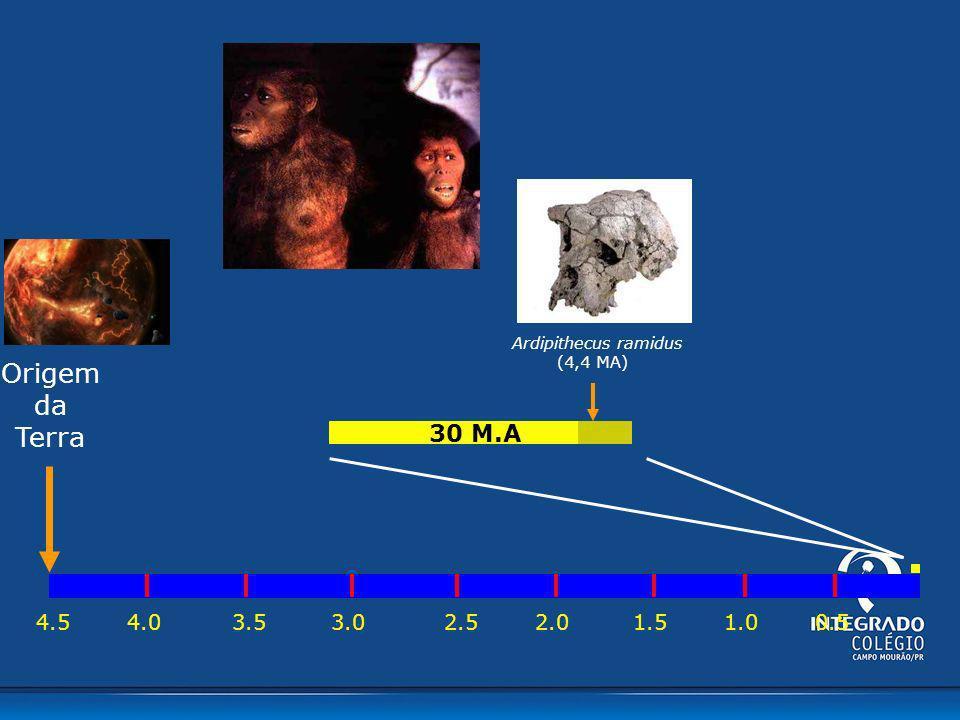 Ardipithecus ramidus (4,4 MA) Origem da Terra 30 M.A 4.5 4.0 3.5 3.0 2.0 2.5 1.0 1.5 0.5