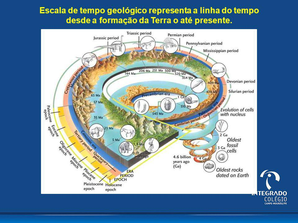Escala de tempo geológico representa a linha do tempo