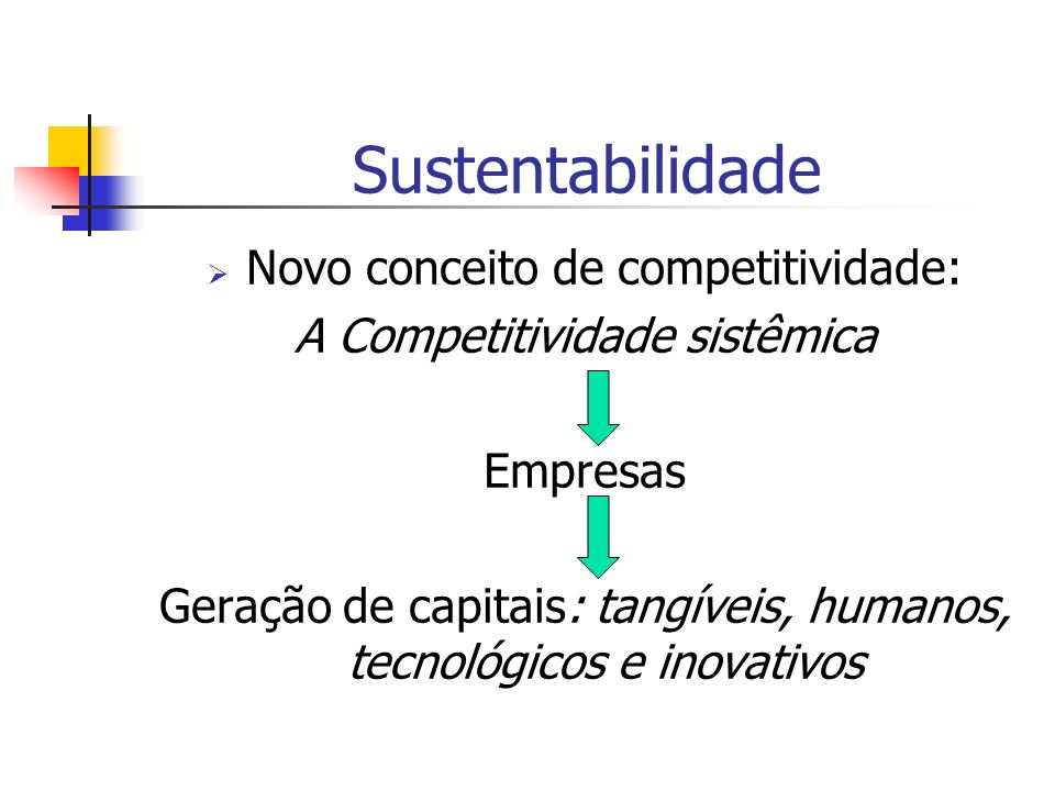 Sustentabilidade Novo conceito de competitividade: