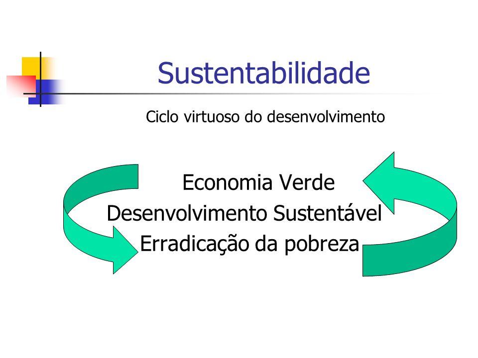 Sustentabilidade Economia Verde Desenvolvimento Sustentável Erradicação da pobreza Ciclo virtuoso do desenvolvimento.