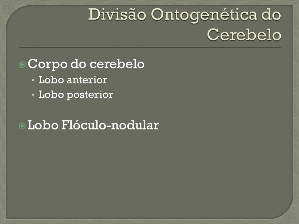 Divisão Ontogenética do Cerebelo