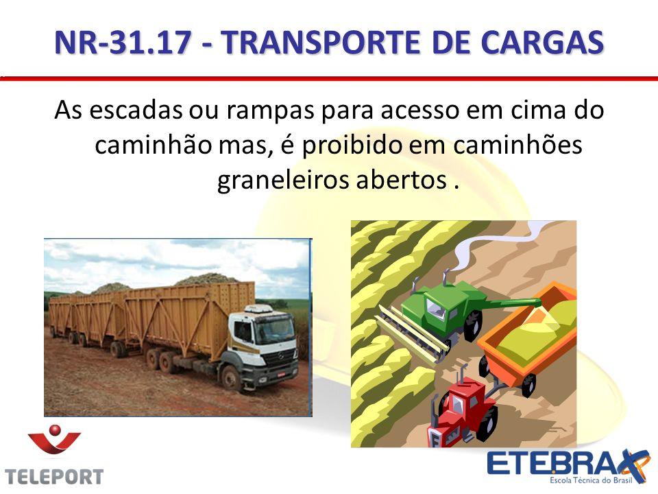NR-31.17 - TRANSPORTE DE CARGAS