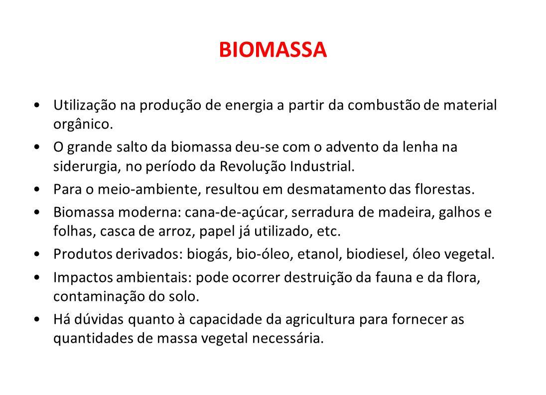 BIOMASSA Utilização na produção de energia a partir da combustão de material orgânico.