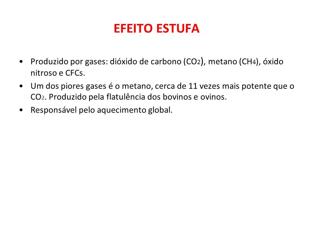 EFEITO ESTUFA Produzido por gases: dióxido de carbono (CO2), metano (CH4), óxido nitroso e CFCs.