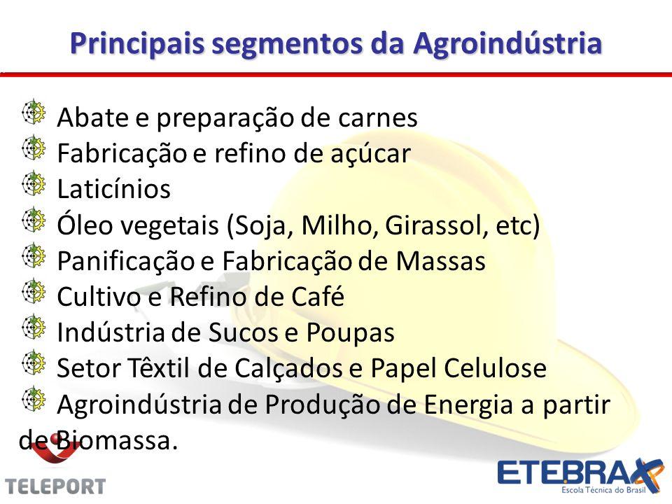 Principais segmentos da Agroindústria