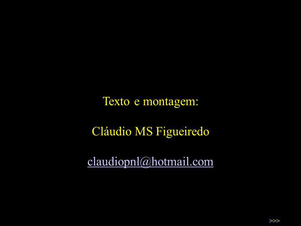 Texto e montagem: Cláudio MS Figueiredo claudiopnl@hotmail.com