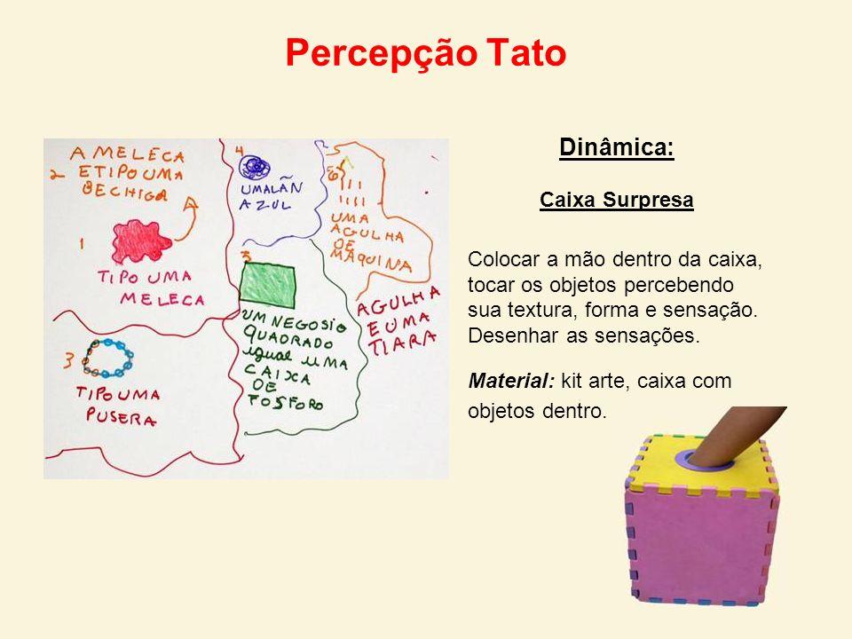 Percepção Tato Dinâmica: Caixa Surpresa