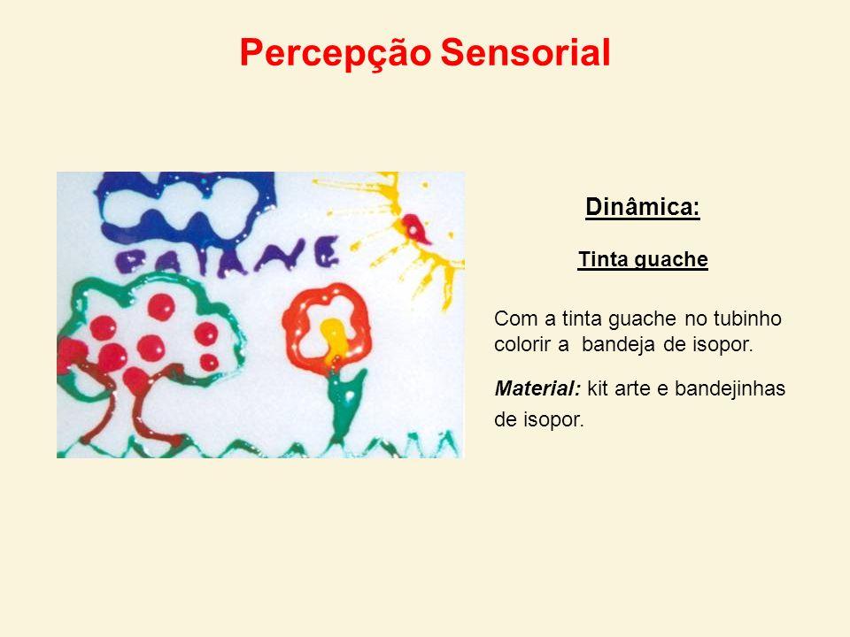 Percepção Sensorial Dinâmica: Tinta guache