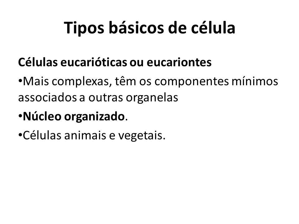Tipos básicos de célula