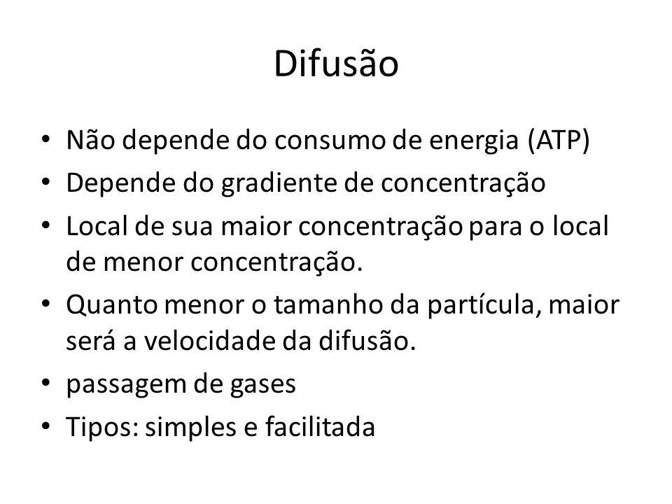 Difusão Não depende do consumo de energia (ATP)