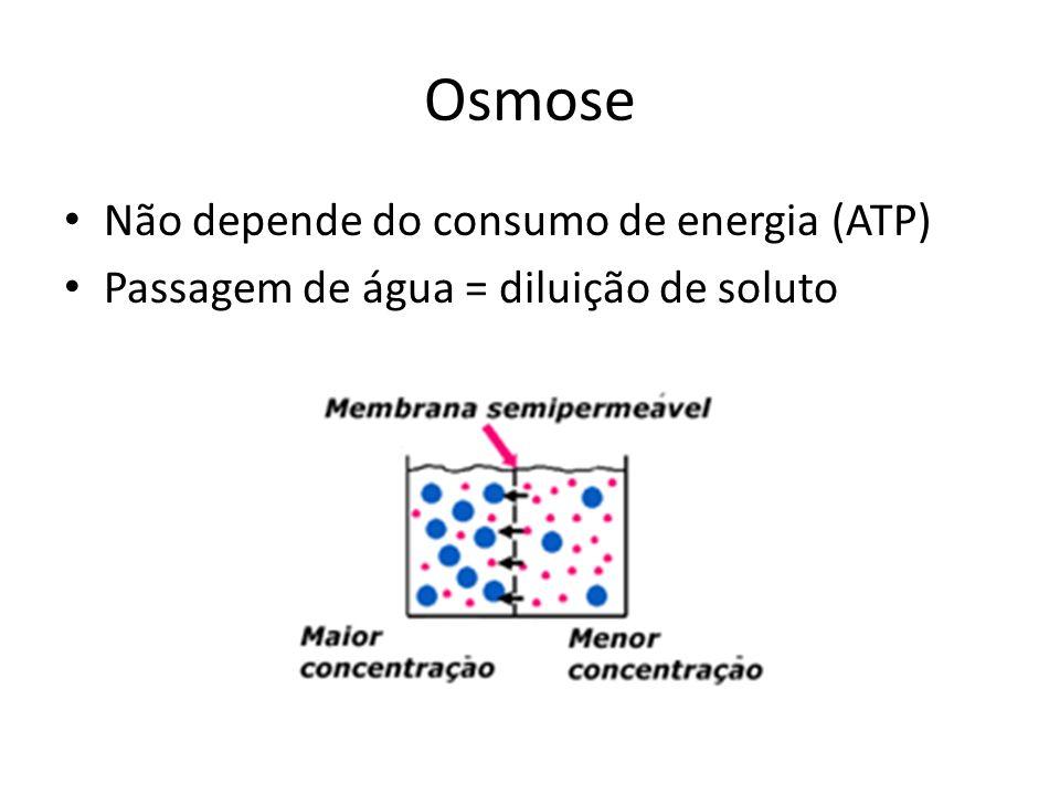 Osmose Não depende do consumo de energia (ATP)