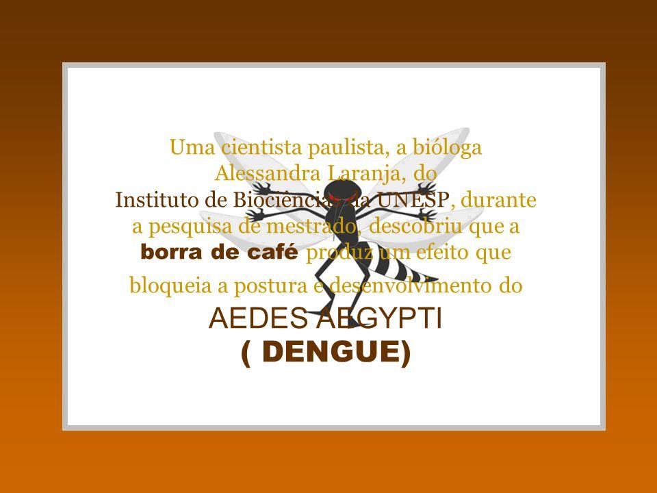 Uma cientista paulista, a bióloga Alessandra Laranja, do Instituto de Biociências da UNESP, durante a pesquisa de mestrado, descobriu que a borra de café produz um efeito que bloqueia a postura e desenvolvimento do AEDES AEGYPTI ( DENGUE)