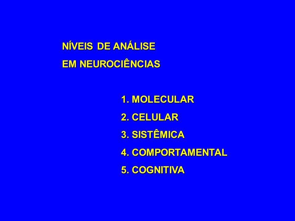 NÍVEIS DE ANÁLISE EM NEUROCIÊNCIAS. 1. MOLECULAR.