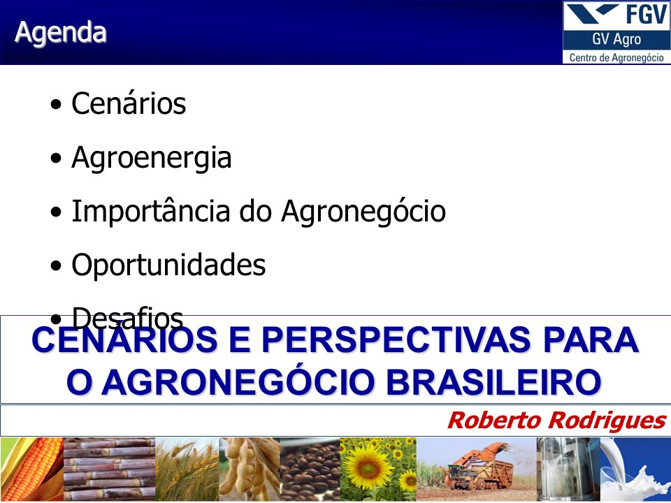 CENÁRIOS E PERSPECTIVAS PARA O AGRONEGÓCIO BRASILEIRO