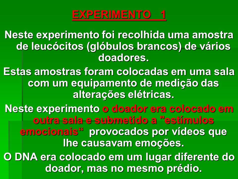 EXPERIMENTO 1 Neste experimento foi recolhida uma amostra de leucócitos (glóbulos brancos) de vários doadores.