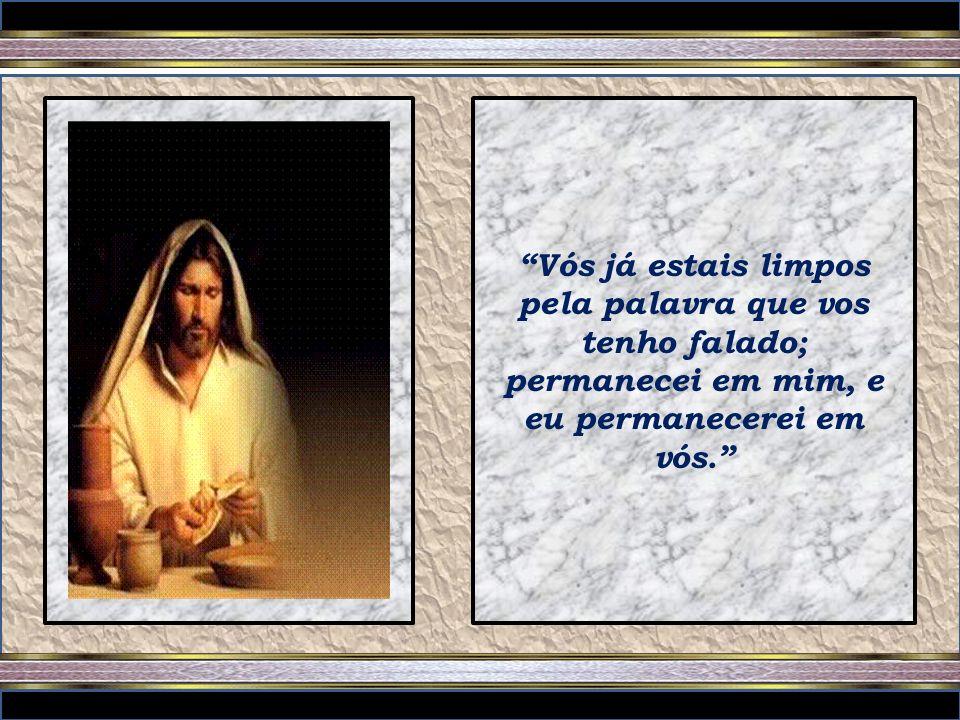 Vós já estais limpos pela palavra que vos tenho falado; permanecei em mim, e eu permanecerei em vós.