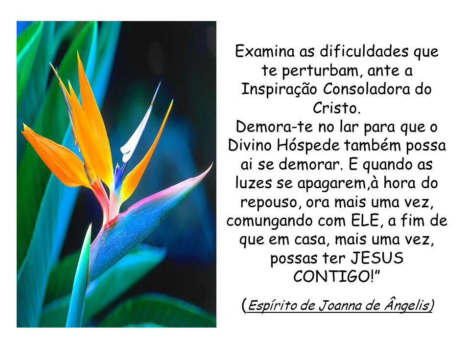 (Espírito de Joanna de Ângelis)