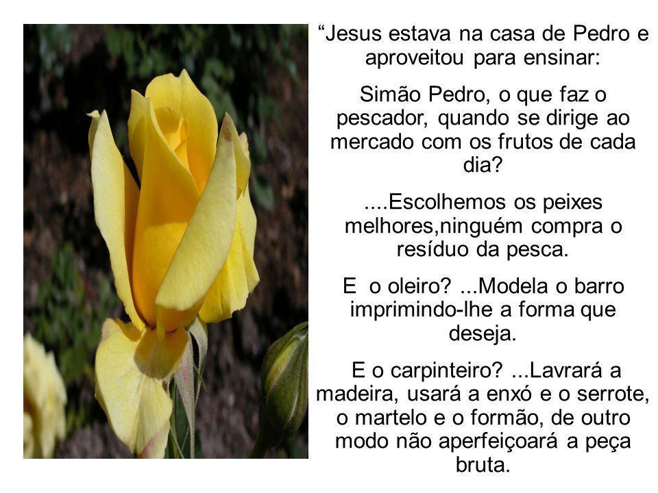Jesus estava na casa de Pedro e aproveitou para ensinar: