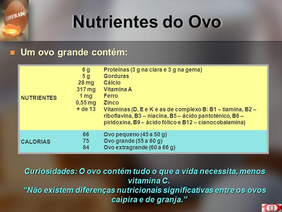 Nutrientes do Ovo Um ovo grande contém: