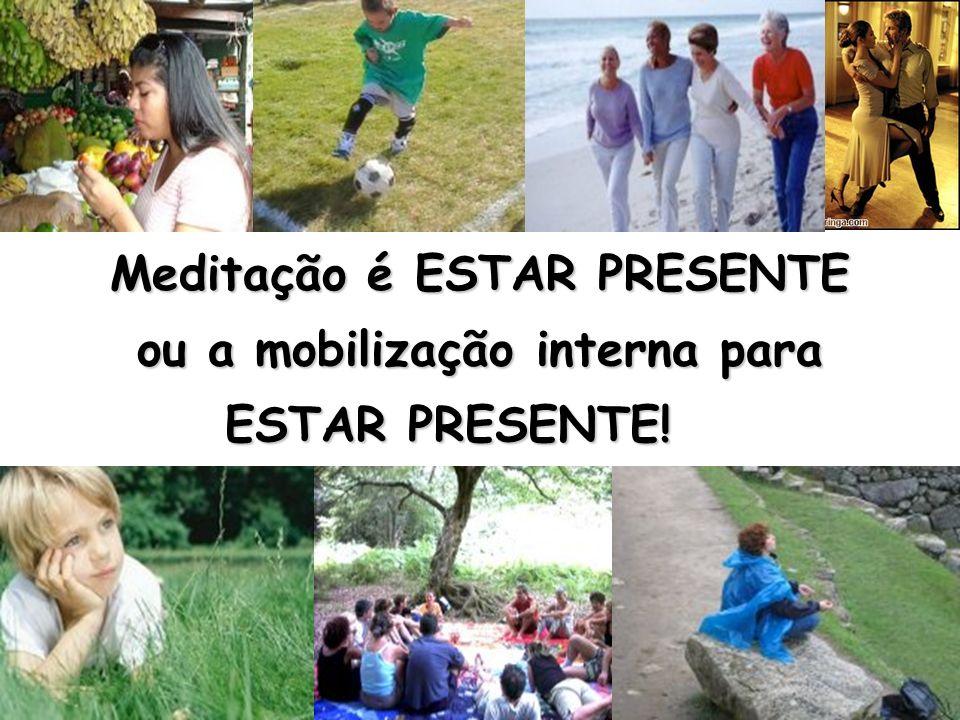Meditação é ESTAR PRESENTE ou a mobilização interna para