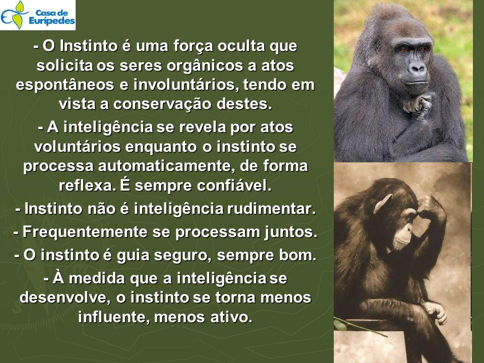 - Instinto não é inteligência rudimentar.