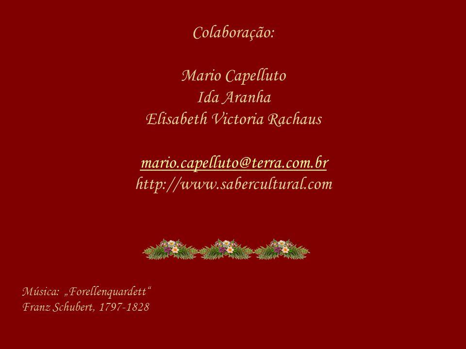 Colaboração: Mario Capelluto Ida Aranha Elisabeth Victoria Rachaus mario.capelluto@terra.com.br http://www.sabercultural.com
