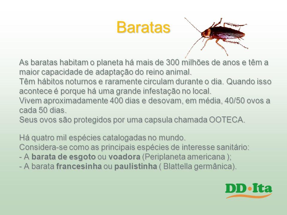 Baratas As baratas habitam o planeta há mais de 300 milhões de anos e têm a. maior capacidade de adaptação do reino animal.