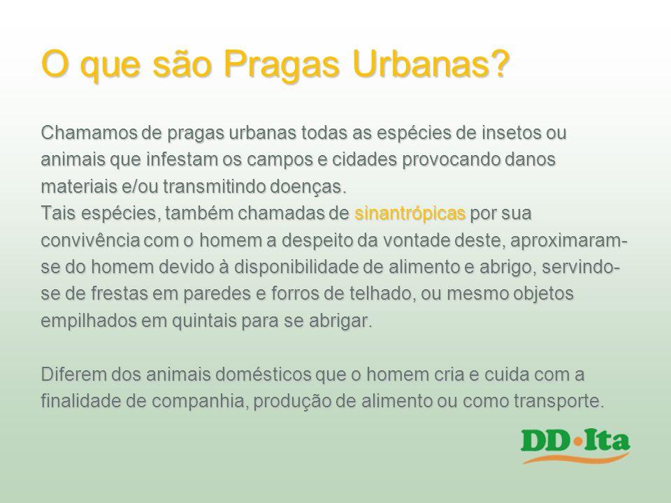 O que são Pragas Urbanas