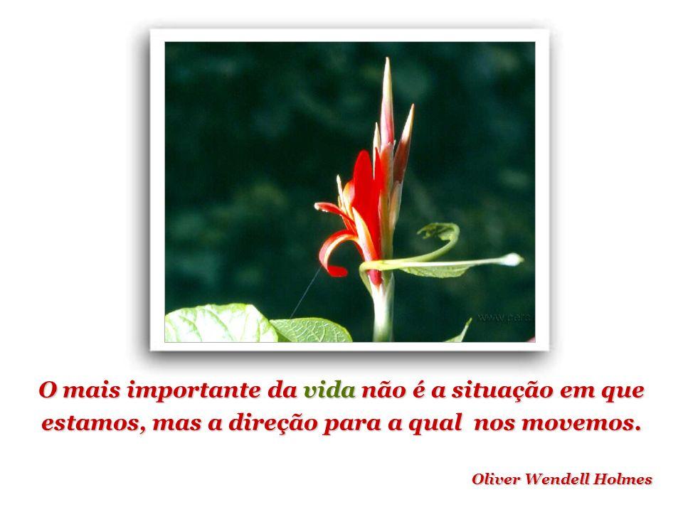 O mais importante da vida não é a situação em que estamos, mas a direção para a qual nos movemos.