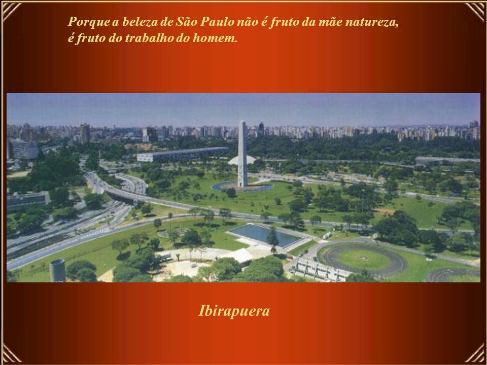 Ibirapuera Porque a beleza de São Paulo não é fruto da mãe natureza,
