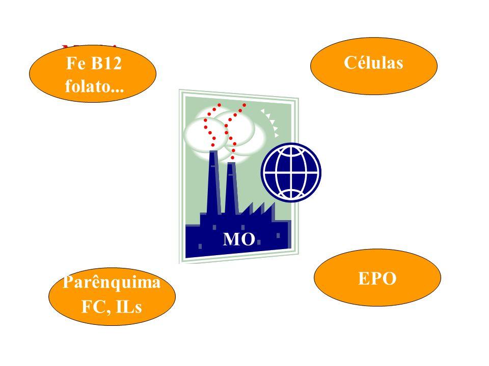 Matéria prima Pessoal Fe B12 folato... Células MO EPO Parênquima FC, ILs