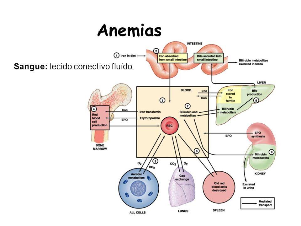 Anemias Sangue: tecido conectivo fluído.