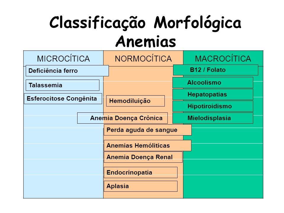 Classificação Morfológica Anemias