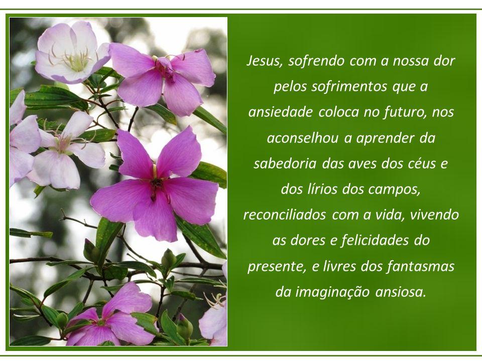 Jesus, sofrendo com a nossa dor pelos sofrimentos que a