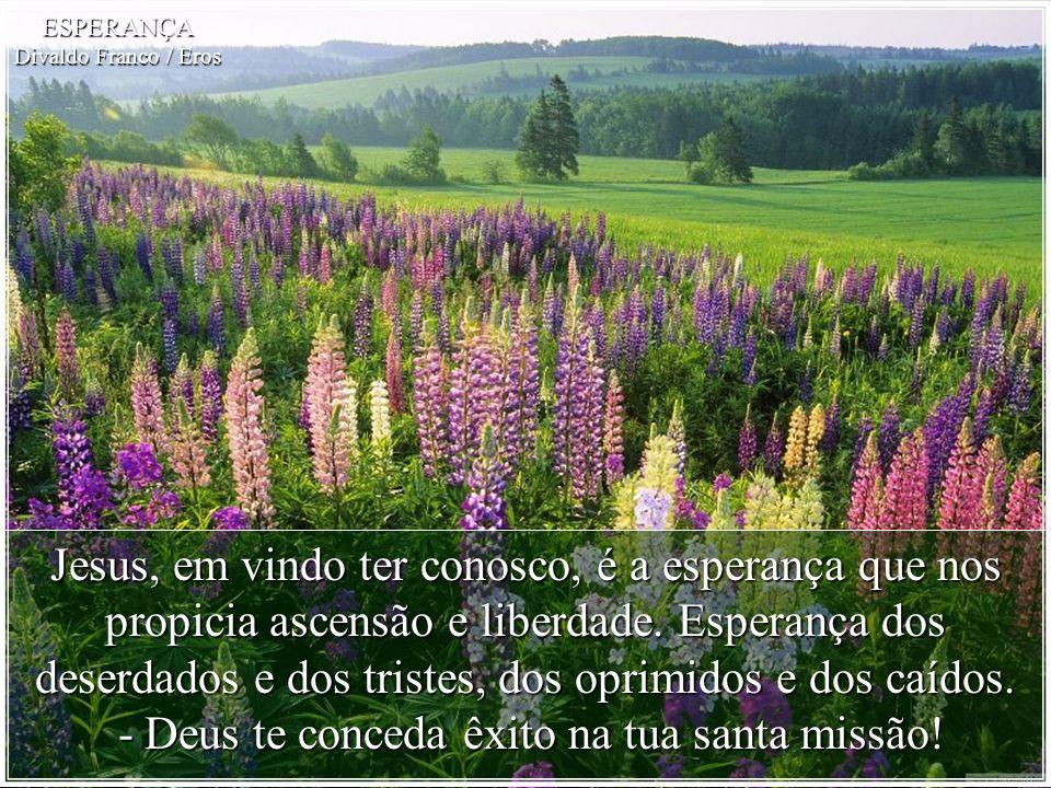 - Deus te conceda êxito na tua santa missão!
