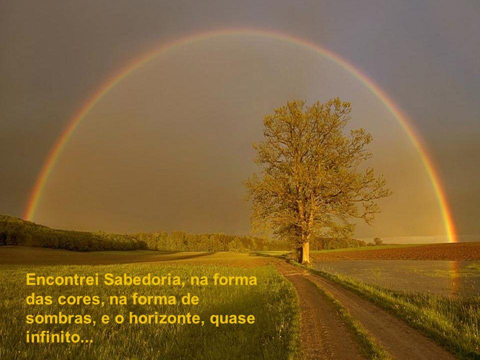 Encontrei Sabedoria, na forma das cores, na forma de sombras, e o horizonte, quase infinito...