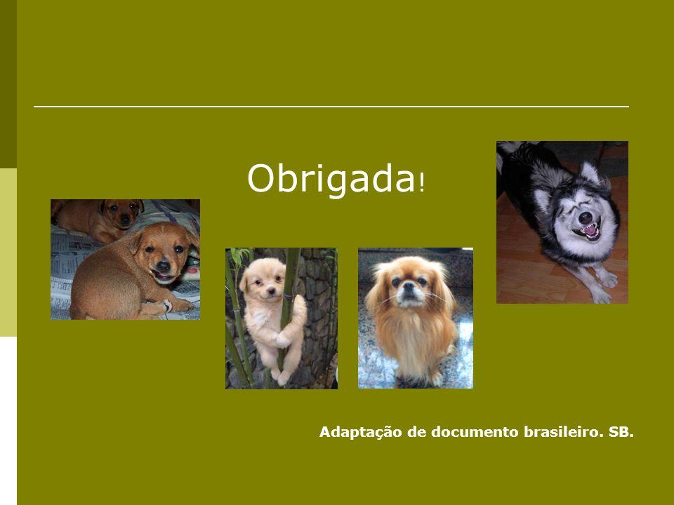 Obrigada! Adaptação de documento brasileiro. SB.