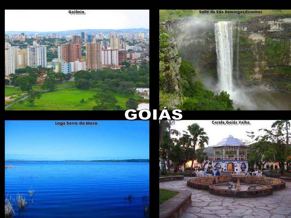 GOIÁS informatizado em todas as regiões do Brasil, com resultados em