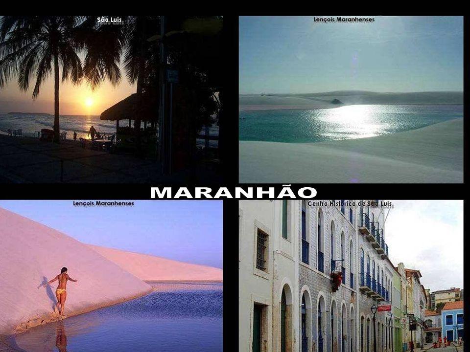 MARANHÃO E -Mesmo sendo um país em desenvolvimento, os internautas brasileiros. representam uma fatia de 40% do mercado na América Latina.