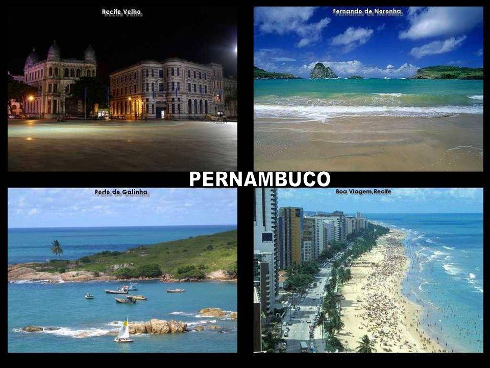 PERNAMBUCO E por que não dizer que o Brasil é hoje a