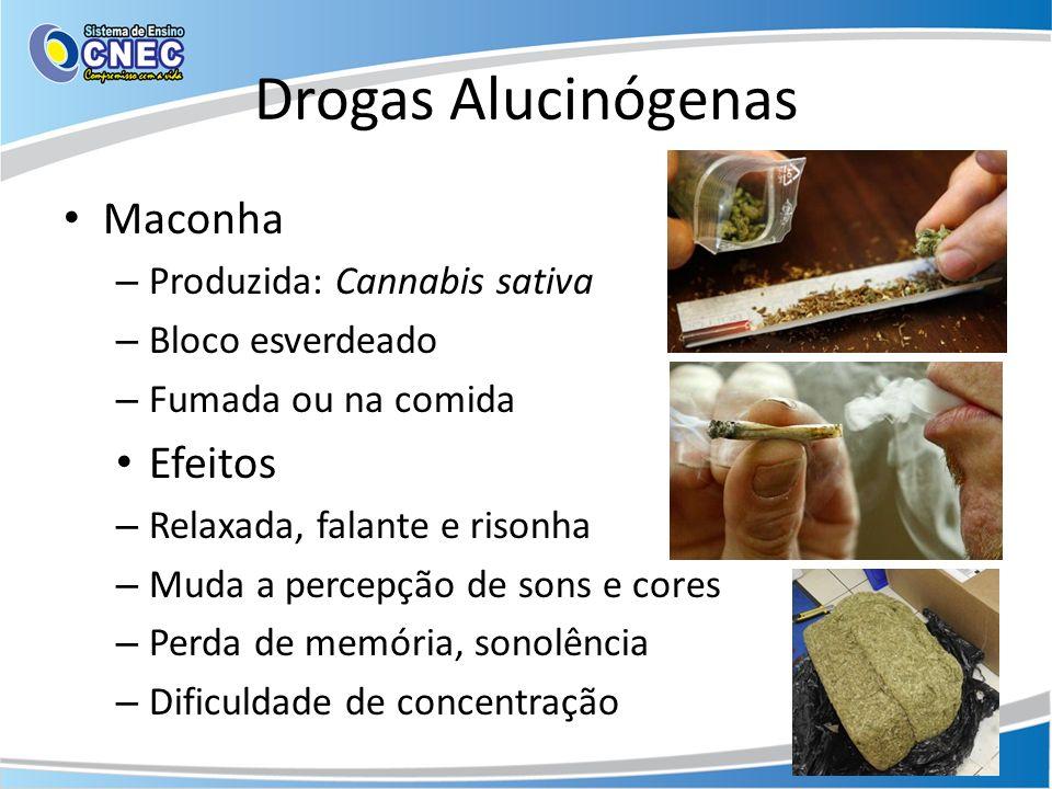Drogas Alucinógenas Maconha Efeitos Produzida: Cannabis sativa